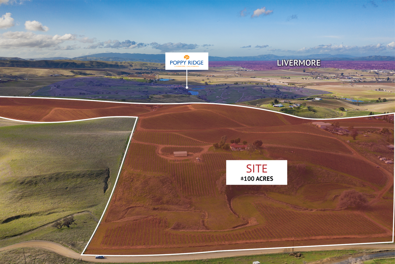 100 acre vineyard in livermore northgate commercial real estate 100 acre vineyard in livermore